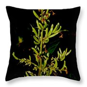 Red Lilac Seeds Throw Pillow