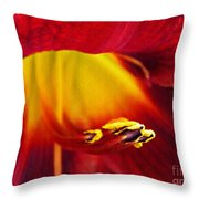 Red Lily Center 4 Throw Pillow