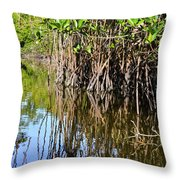 Red Mangrove Roots Reflections In The Gordon River Throw Pillow