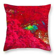 Red Maple 4 Throw Pillow