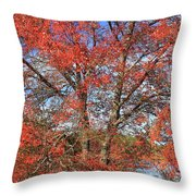Red Maple Foliage Kaleidoscope Throw Pillow