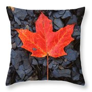 Red Maple Leaf On Black Shale Throw Pillow