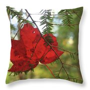 Red Maple Leaf On Hemlock Throw Pillow