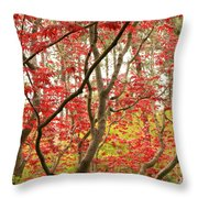 Red Maple Leaves And Branches Throw Pillow