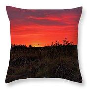 Red Marsh Sunrise Throw Pillow