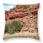 Red Mesa And Yellow Flowers Throw Pillow
