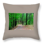 Red Mountain Trail  Throw Pillow