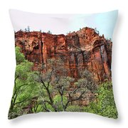 Red Mountains Zion National Park Usa Throw Pillow