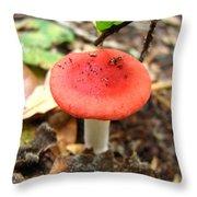 Red Mushroom 2 Throw Pillow