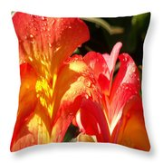 Red N Yellow Flowers 2 Throw Pillow