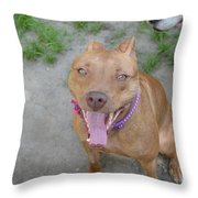 Red Nose Pitty Throw Pillow