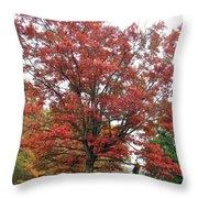 Red Oak 2 Throw Pillow