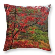 Red Oak And Millers River Valley Throw Pillow