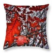 Red Oaks Throw Pillow