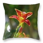 Red Orange Day Lilies I Throw Pillow