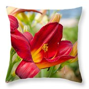 Red Orange Lily By The Lake Throw Pillow