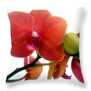 Red Orchid Flowers 02 Throw Pillow