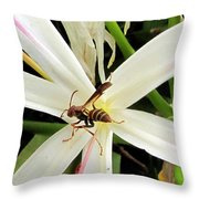 Red Paper Wasp And Spider Lily 000 Throw Pillow