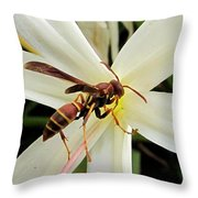 Red Paper Wasp And Spider Lily 001 Throw Pillow