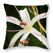 Red Paper Wasps And Spider Lily Throw Pillow