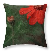 Red Passion... Throw Pillow