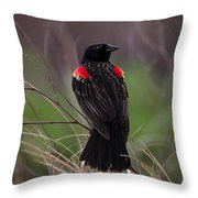 Red Patches Throw Pillow