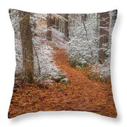 Red Path Throw Pillow
