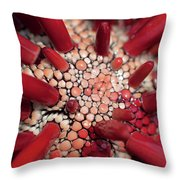 Red Pencil Urchin Throw Pillow