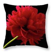 Red Peony  Throw Pillow