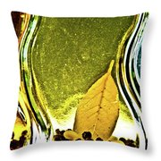 Red Pepper Bay Leaf And Thyme Throw Pillow
