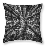 Red Pine Tree Tops In Black And White Throw Pillow