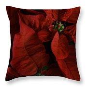 Red Poinsettia Throw Pillow by Ann Garrett