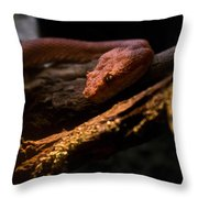 Red Poisonous Snake Throw Pillow
