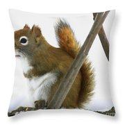 Red Pondering Throw Pillow