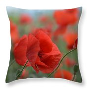 Red Poppies Blooming Throw Pillow