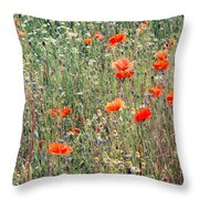 Red Poppies In A Summer Sun Throw Pillow