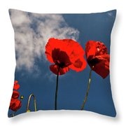 Red Poppies On Blue Sky Throw Pillow