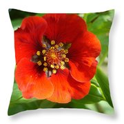 Red Red Bloom Throw Pillow
