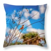 Red Red Robin Throw Pillow