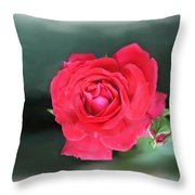 Red-red Rose. Throw Pillow