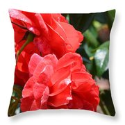 Red Red Roses Throw Pillow