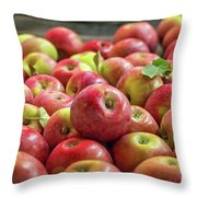 Red Ripe Apples Throw Pillow