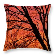 Red Rising Throw Pillow