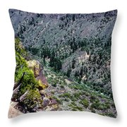 Red River Gorge Throw Pillow