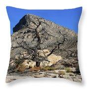 Red Rock Canyon Nv 1 Throw Pillow