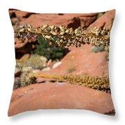 Red Rock Canyon Nv 11 Throw Pillow