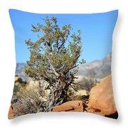 Red Rock Canyon Nv 3 Throw Pillow