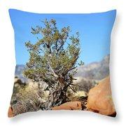 Red Rock Canyon Nv 4 Throw Pillow