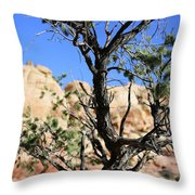 Red Rock Canyon Nv 6 Throw Pillow
