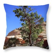 Red Rock Canyon Nv 9 Throw Pillow